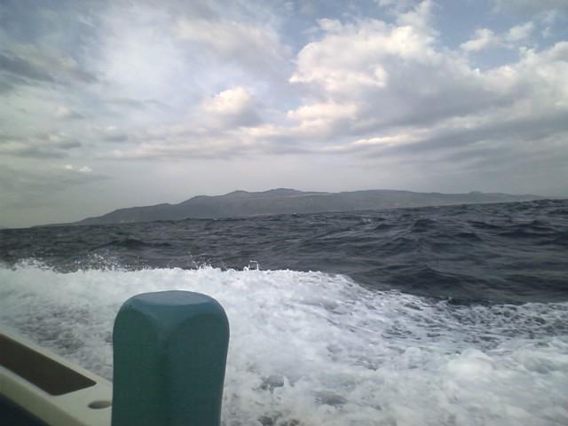 大島だよ!